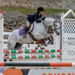 RES Hunter Jumper Show Bermuda, March 17 2019-1670