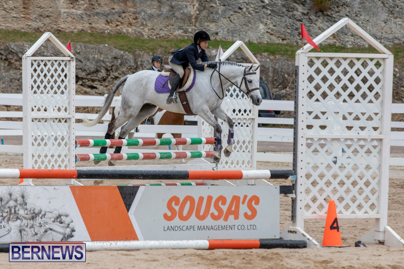 RES-Hunter-Jumper-Show-Bermuda-March-17-2019-1671