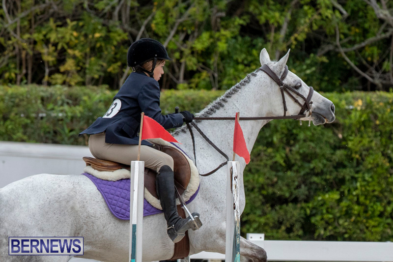 RES-Hunter-Jumper-Show-Bermuda-March-17-2019-1675