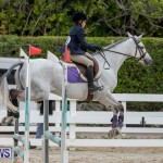 RES Hunter Jumper Show Bermuda, March 17 2019-1676