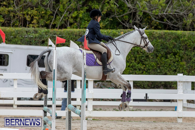 RES-Hunter-Jumper-Show-Bermuda-March-17-2019-1676