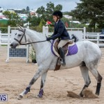 RES Hunter Jumper Show Bermuda, March 17 2019-1685