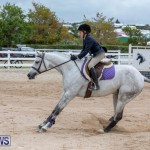 RES Hunter Jumper Show Bermuda, March 17 2019-1686