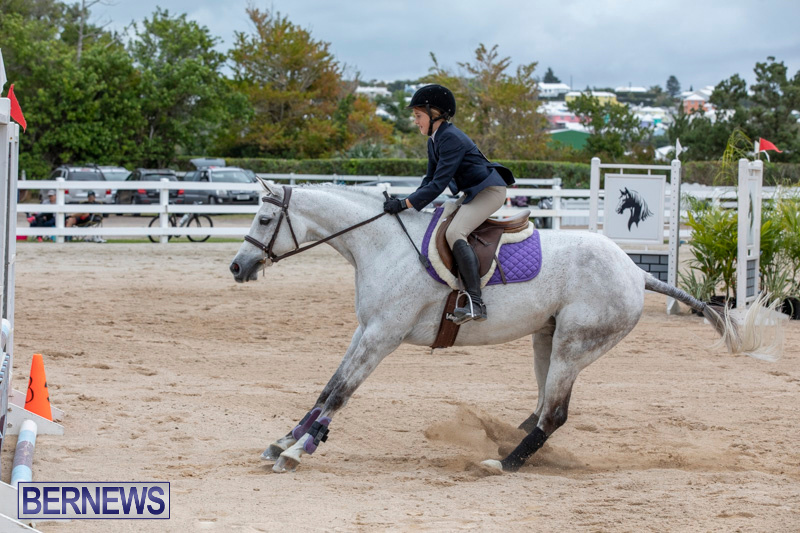 RES-Hunter-Jumper-Show-Bermuda-March-17-2019-1686