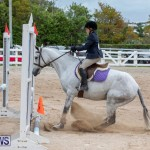 RES Hunter Jumper Show Bermuda, March 17 2019-1689