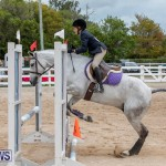RES Hunter Jumper Show Bermuda, March 17 2019-1697