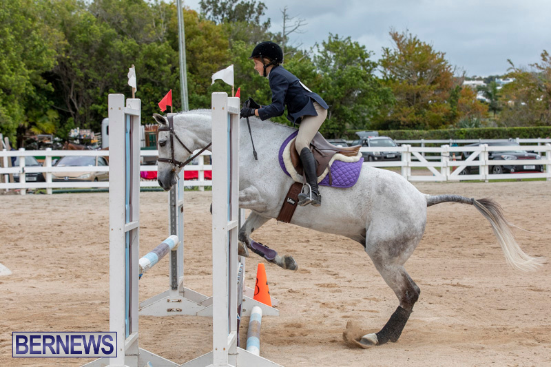 RES-Hunter-Jumper-Show-Bermuda-March-17-2019-1697