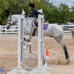 RES Hunter Jumper Show Bermuda, March 17 2019-1698