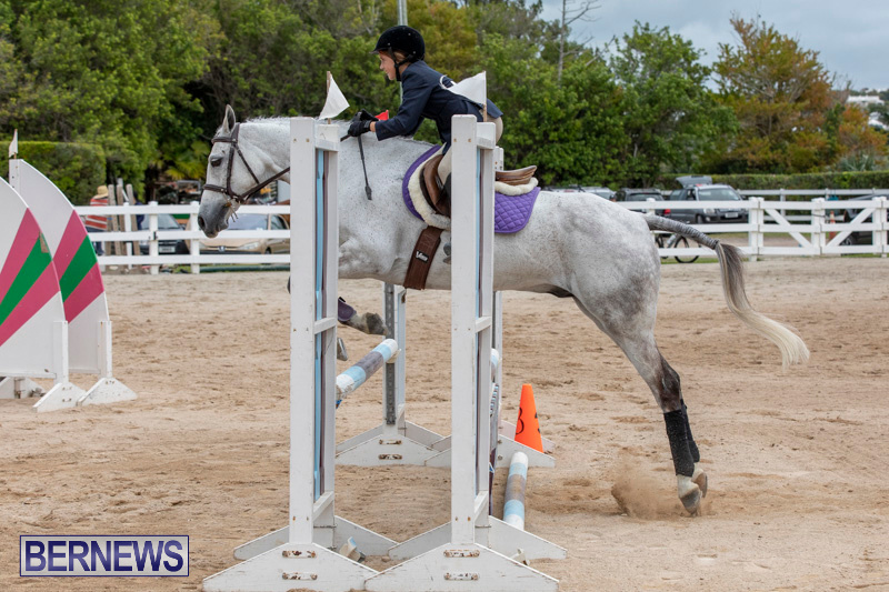 RES-Hunter-Jumper-Show-Bermuda-March-17-2019-1698