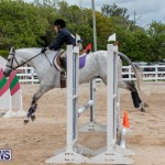 RES Hunter Jumper Show Bermuda, March 17 2019-1699