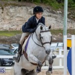 RES Hunter Jumper Show Bermuda, March 17 2019-1717