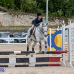 RES Hunter Jumper Show Bermuda, March 17 2019-1718
