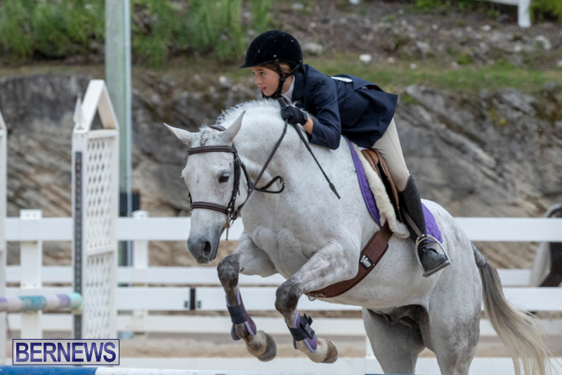 RES-Hunter-Jumper-Show-Bermuda-March-17-2019-1730