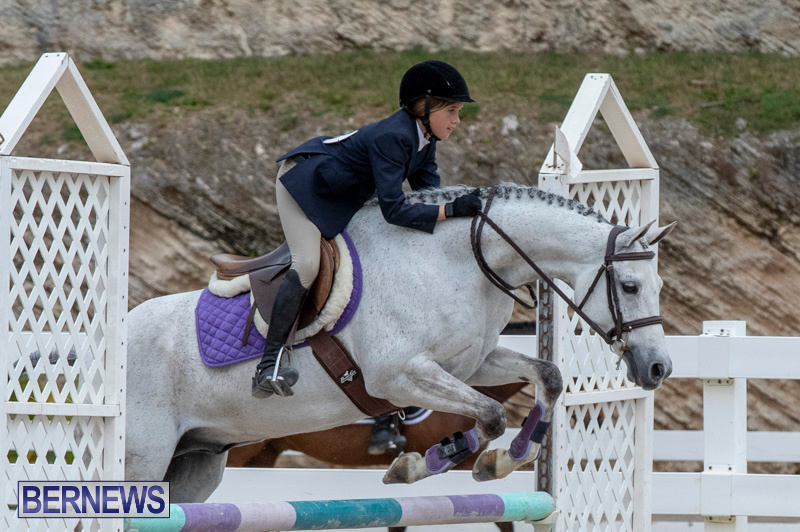 RES-Hunter-Jumper-Show-Bermuda-March-17-2019-1746