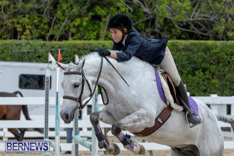 RES-Hunter-Jumper-Show-Bermuda-March-17-2019-1756