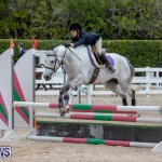 RES Hunter Jumper Show Bermuda, March 17 2019-1757
