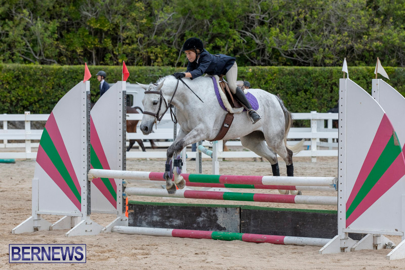 RES-Hunter-Jumper-Show-Bermuda-March-17-2019-1757