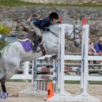 RES Hunter Jumper Show Bermuda, March 17 2019-1765