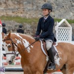 RES Hunter Jumper Show Bermuda, March 17 2019-1772