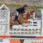 RES Hunter Jumper Show Bermuda, March 17 2019-1777