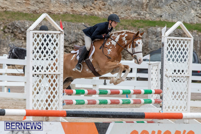 RES-Hunter-Jumper-Show-Bermuda-March-17-2019-1777