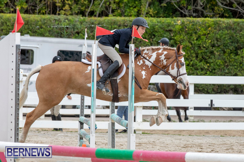 RES-Hunter-Jumper-Show-Bermuda-March-17-2019-1781