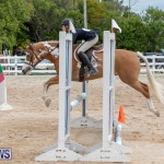 RES Hunter Jumper Show Bermuda, March 17 2019-1788