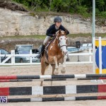 RES Hunter Jumper Show Bermuda, March 17 2019-1797