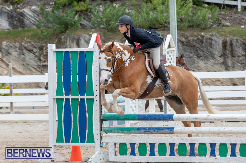 RES-Hunter-Jumper-Show-Bermuda-March-17-2019-1806