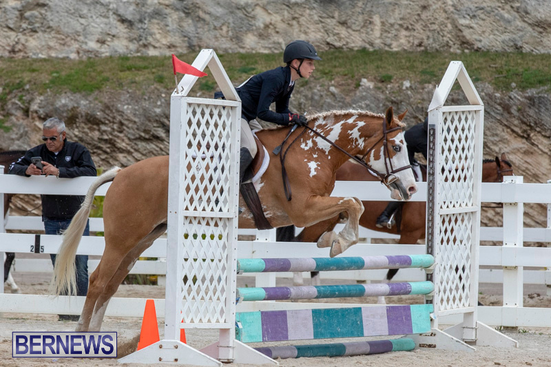 RES-Hunter-Jumper-Show-Bermuda-March-17-2019-1815