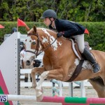 RES Hunter Jumper Show Bermuda, March 17 2019-1818