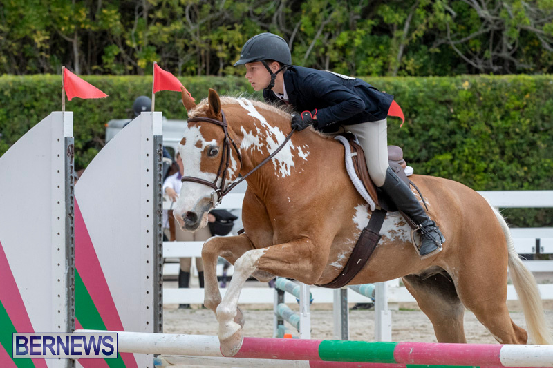 RES-Hunter-Jumper-Show-Bermuda-March-17-2019-1818