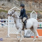 RES Hunter Jumper Show Bermuda, March 17 2019-1826