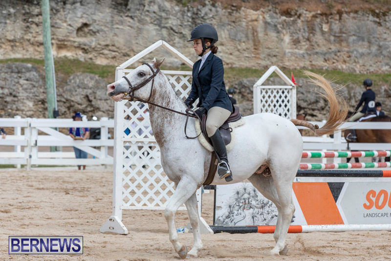 RES-Hunter-Jumper-Show-Bermuda-March-17-2019-1826