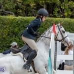 RES Hunter Jumper Show Bermuda, March 17 2019-1827