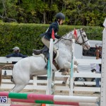 RES Hunter Jumper Show Bermuda, March 17 2019-1828