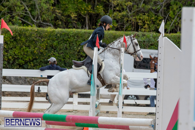 RES-Hunter-Jumper-Show-Bermuda-March-17-2019-1828