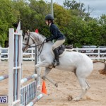 RES Hunter Jumper Show Bermuda, March 17 2019-1831