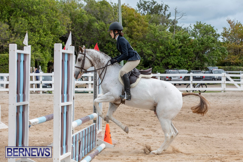 RES-Hunter-Jumper-Show-Bermuda-March-17-2019-1831