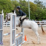 RES Hunter Jumper Show Bermuda, March 17 2019-1832