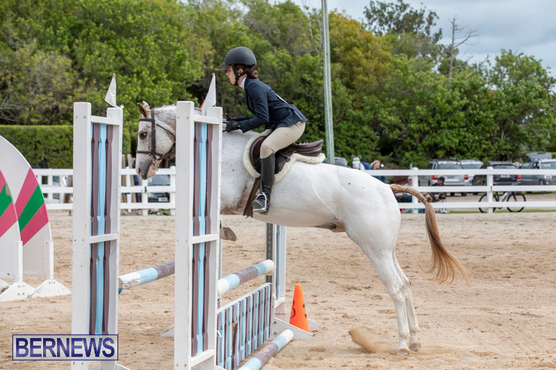 RES-Hunter-Jumper-Show-Bermuda-March-17-2019-1832