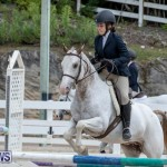 RES Hunter Jumper Show Bermuda, March 17 2019-1845