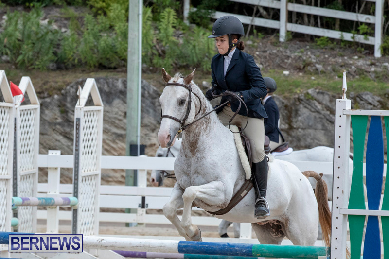 RES-Hunter-Jumper-Show-Bermuda-March-17-2019-1845