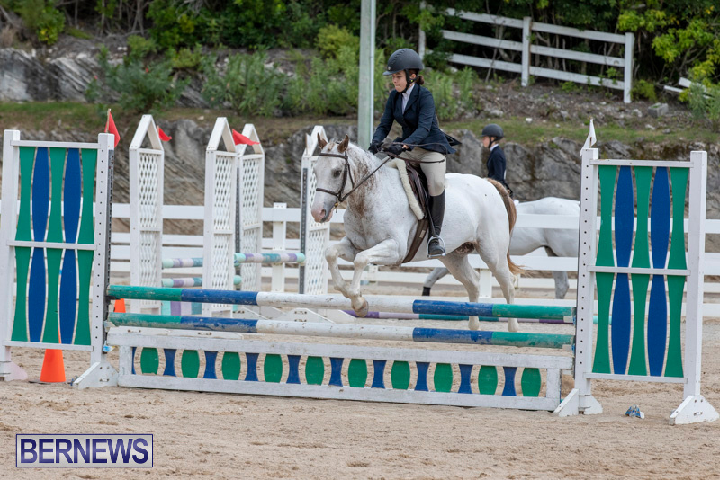 RES-Hunter-Jumper-Show-Bermuda-March-17-2019-1846