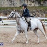 RES Hunter Jumper Show Bermuda, March 17 2019-1851
