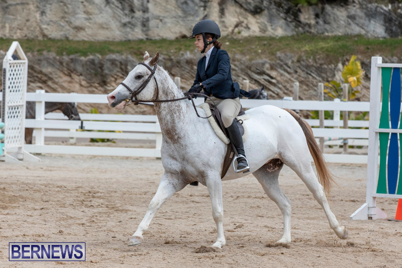 RES-Hunter-Jumper-Show-Bermuda-March-17-2019-1851