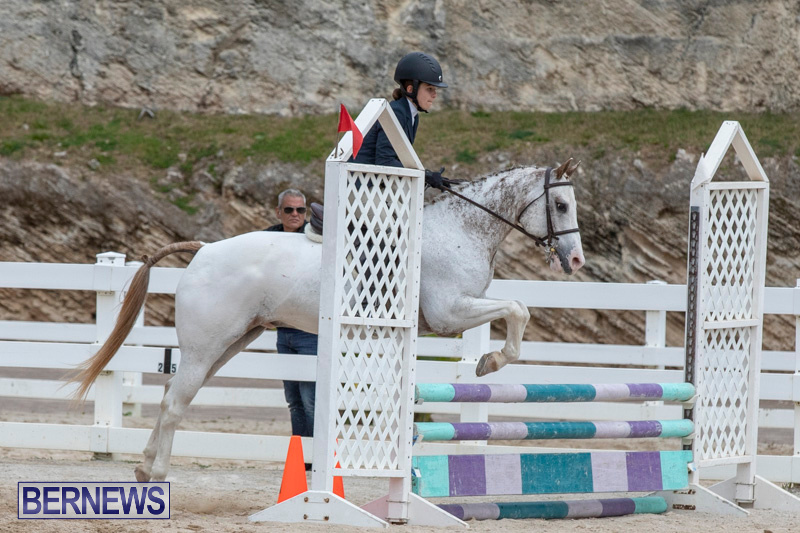 RES-Hunter-Jumper-Show-Bermuda-March-17-2019-1856