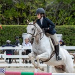 RES Hunter Jumper Show Bermuda, March 17 2019-1859