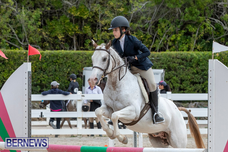 RES-Hunter-Jumper-Show-Bermuda-March-17-2019-1859