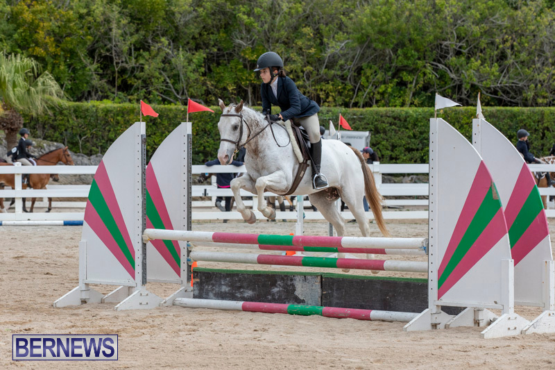 RES-Hunter-Jumper-Show-Bermuda-March-17-2019-1860